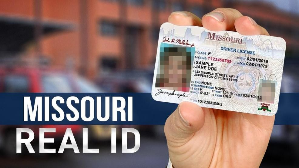 missouri drivers license renewal fee