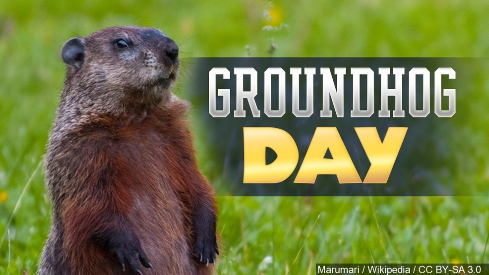 Will Punxsutawney Phil see his shadow on Groundhog Day? | KHQA